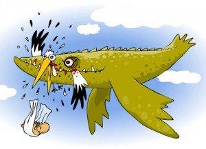 Nouvelles du Front... 15 Mai 2012 dans IAC n° 1 - Coup dans l'eau mangeur-de-cigogne-300x216
